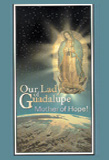 Image for Our Lady of Guadalupe: Mother of Hope
